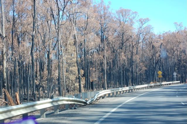 Melba Hwy fire pics Mar 09 Melbatwistedguardrail-1