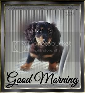 Good Morning, Good Day, Good Evening, or whatever lol - Page 5 GoodMorning_bbydoxiedsm-vi