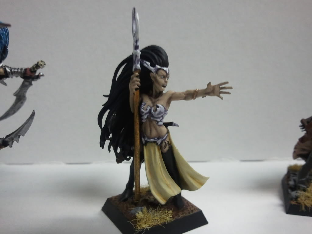 dark - Dark elf warband (wip) 2011-12-14172405