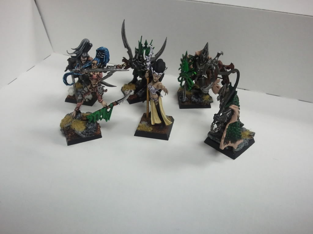 dark - Dark elf warband (wip) 2011-12-14172742