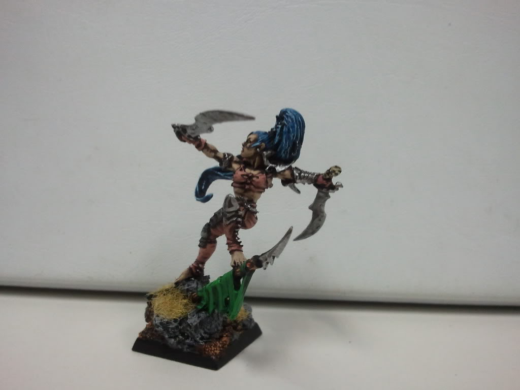 dark - Dark elf warband (wip) 2012-03-14162405