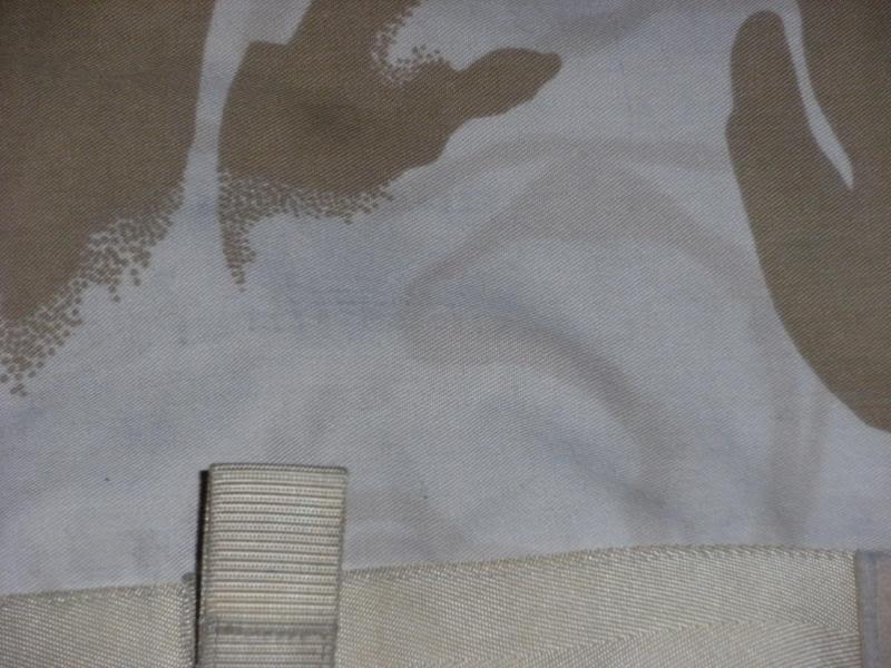 CBA Cover-Desert-Sparse???? DSCF0007_zps6b849b04