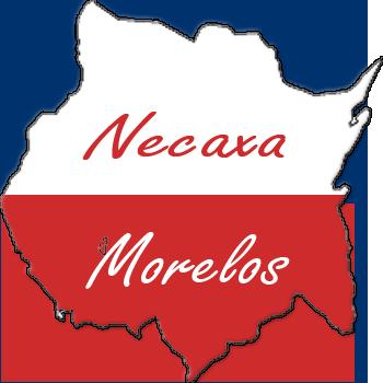 escudo-necaxa morelos fc Escudo-morelos2-1