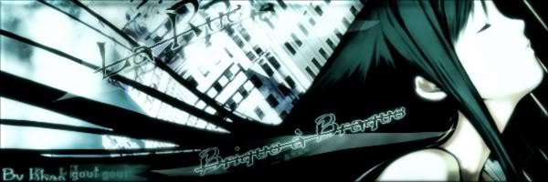 ".:"" La ' Rue ° Brique ° à ' Braque "":. BannireLaRueBriqueABraque"