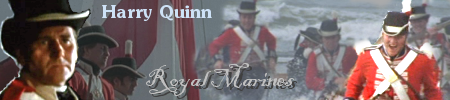 OPORTO, 22nd May - Naval Landing Parties Quinnbanner4