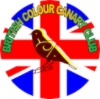 The Colour Canary Forum 2e354900-7420-4399-a299-4d4f4ffc07d5