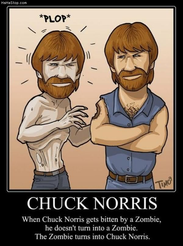 Funny Zombie Pics Super_funny_hilarious_pictures_Chuck_Norris_Zombie