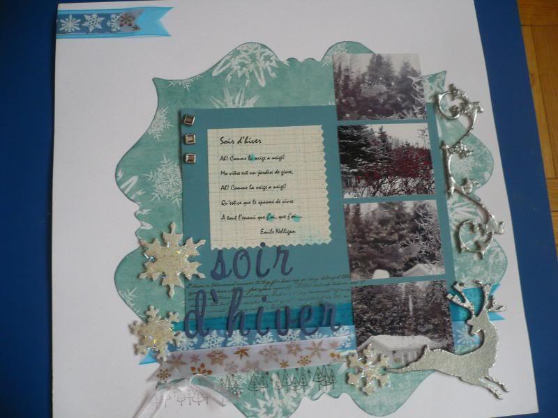 3 janvier - soir d'hiver P1060248