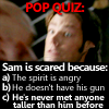 Icons Via Internet [SN Only] SPNSamPopQuizTallerGuy