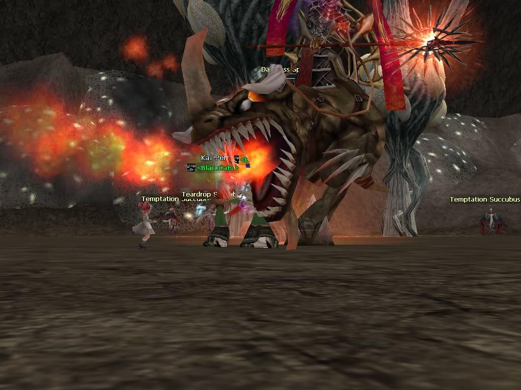 Boss hunting.. rawr~~ Rohan0320054530828