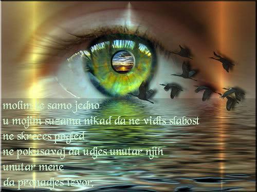 Poezija u slici KK-2