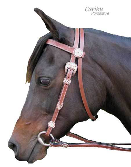 Stall One - Rose BridleMainClear