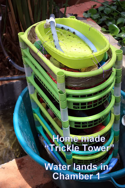 Looking for sand filter lid and ideas for my trickle tower. IMG_1964