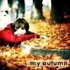 random icons & banners ~ quatro. Autumn_goods_by_Memo89