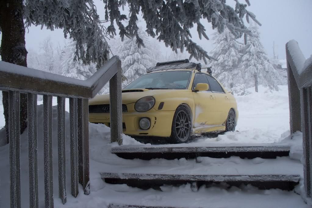 Subarus in the Wild Winterwrx3