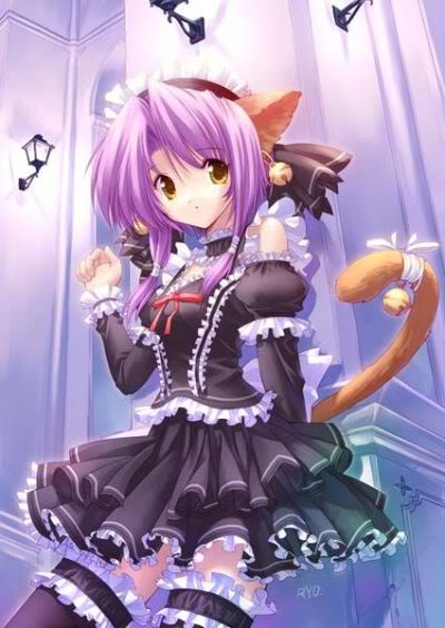 انـــــمـــــي cats PurpleNeko-2