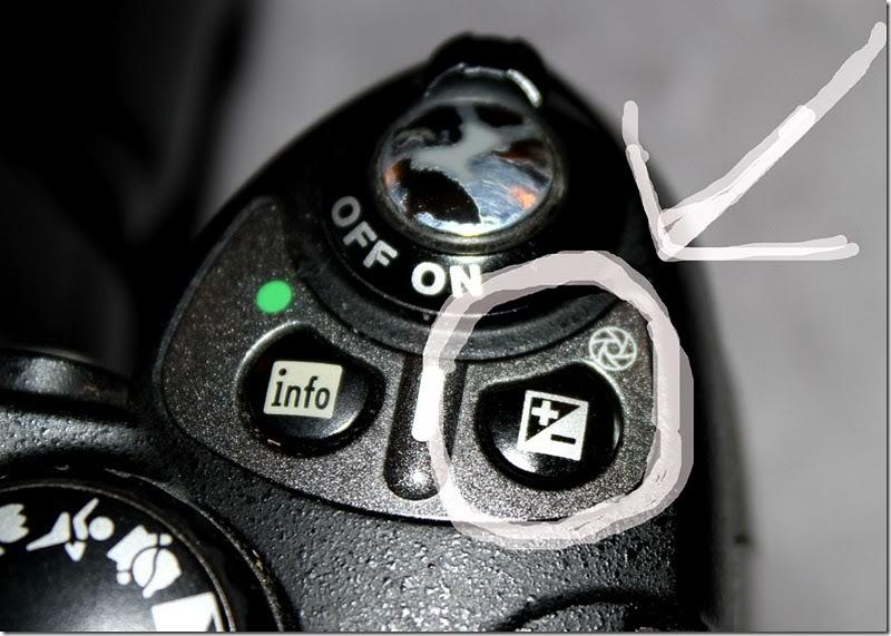 Innføring i fotografering og kamerateknikk IMG_6058copy_thumb2