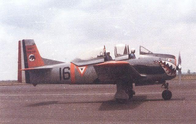 Northrop F-5E/F; El primer caza supersónico mexicano - Página 8 T-28AFAM00