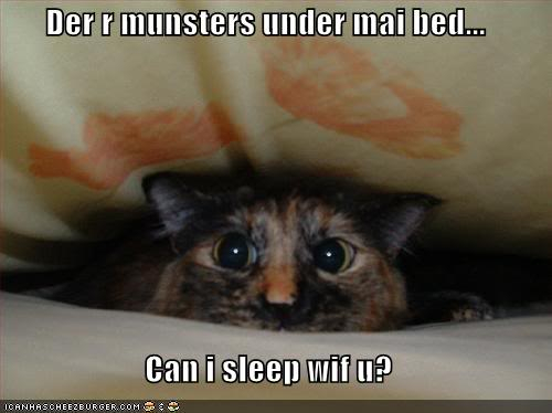 To Everyone at Hugz Funny-pictures-cat-is-scared-and-wa