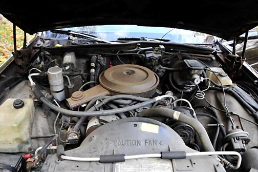 1987 Chevrolet Caprice Classic Coupe Landau Imagejpg6