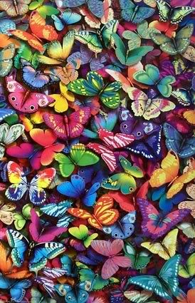 Nadji sliku! - Page 4 Butterflies
