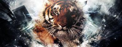 ~//F ork y! vs. Omega_94 Tiger