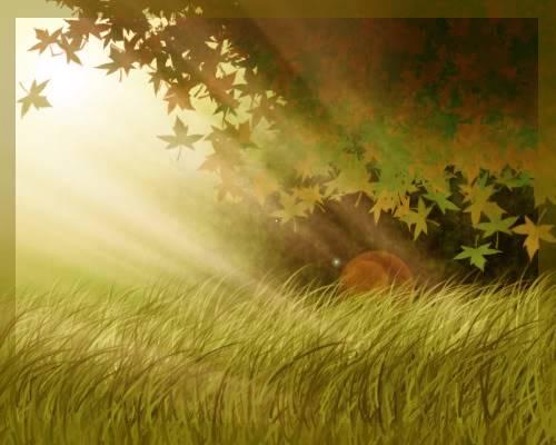Tutorial Photoshop: Crear un bosque muy facilmente Bosque