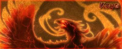 Showboard PhoenixKaya