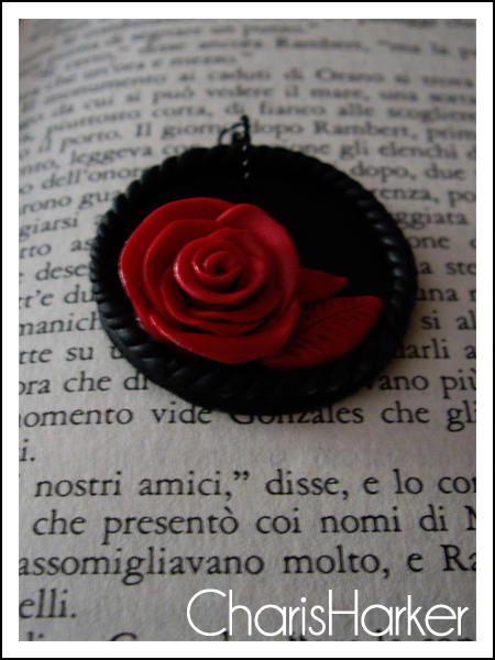 Rose rosse e nere IMGP5748