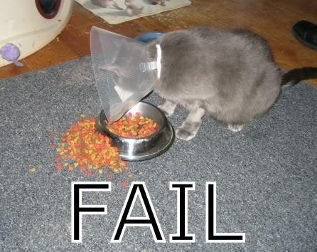 Fail! Fail