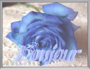 bonjour a tous Rose-bonjour-1-1