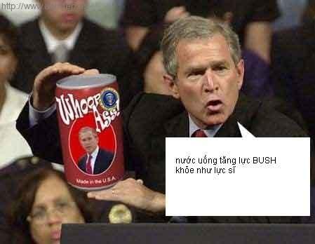 ảnh hài huoc... Hai_huoc_anh_dep_Bush_6889