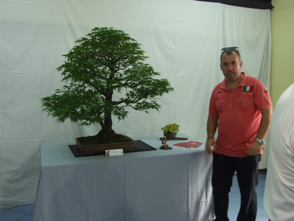 Exposición Bonsai Club Bonsai De Vigo  10 y 11 septiembre 2011 DSCF4048
