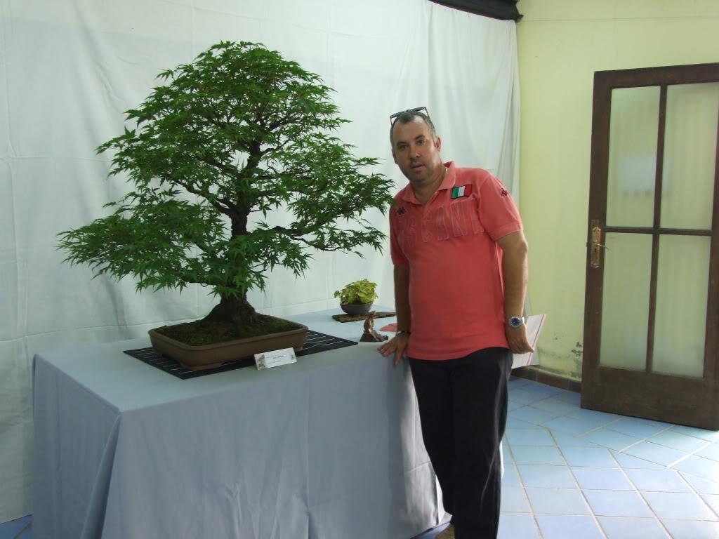 Exposición Bonsai Club Bonsai De Vigo  10 y 11 septiembre 2011 DSCF4049