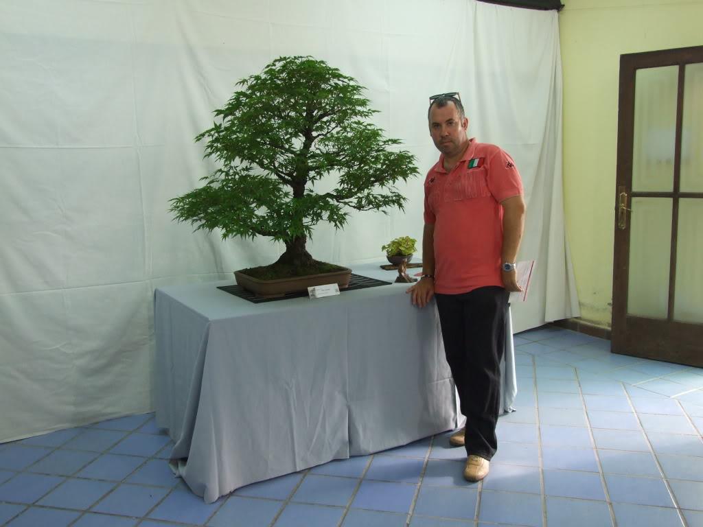 Exposición Bonsai Club Bonsai De Vigo  10 y 11 septiembre 2011 DSCF4050