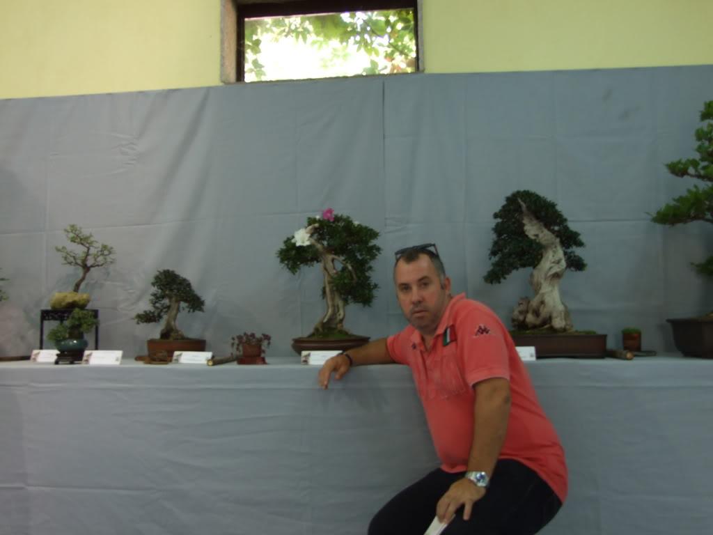 Exposición Bonsai Club Bonsai De Vigo  10 y 11 septiembre 2011 DSCF4065