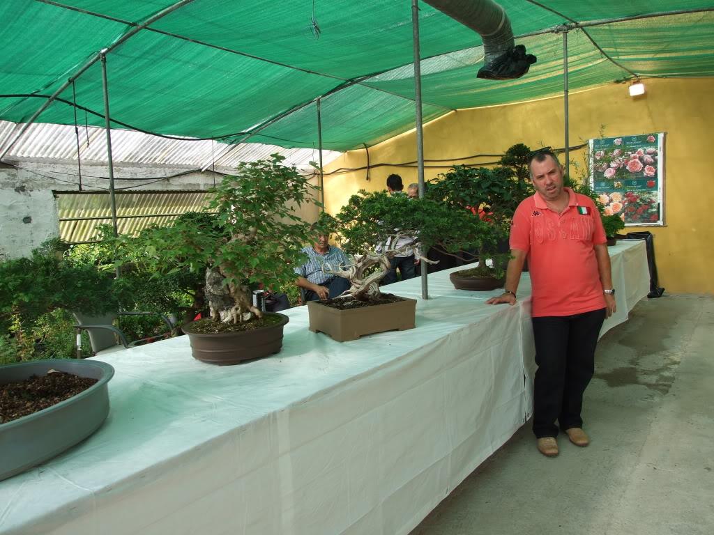 Exposición Bonsai Club Bonsai De Vigo  10 y 11 septiembre 2011 DSCF4097