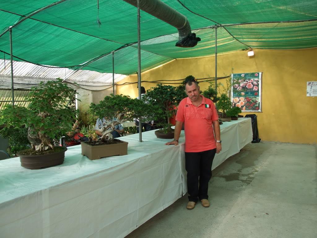 Exposición Bonsai Club Bonsai De Vigo  10 y 11 septiembre 2011 DSCF4098
