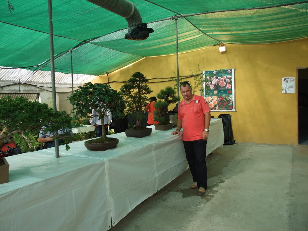Exposición Bonsai Club Bonsai De Vigo  10 y 11 septiembre 2011 DSCF4100