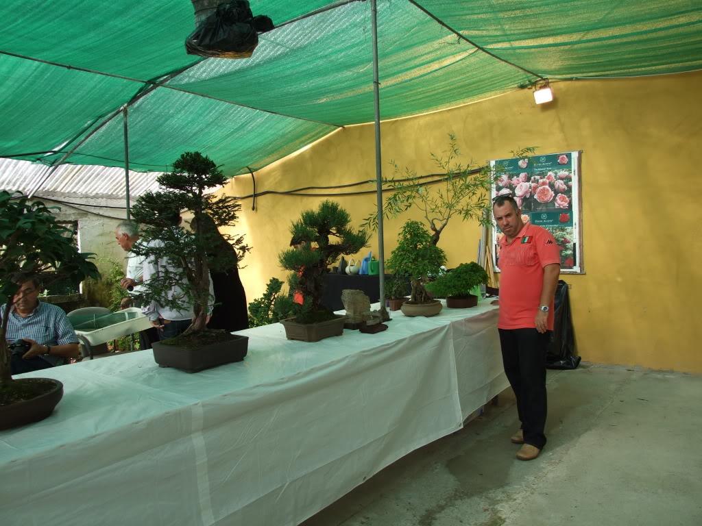 Exposición Bonsai Club Bonsai De Vigo  10 y 11 septiembre 2011 DSCF4101