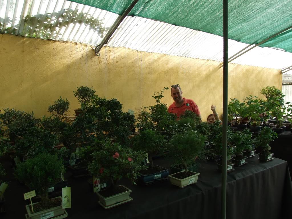Exposición Bonsai Club Bonsai De Vigo  10 y 11 septiembre 2011 DSCF4105
