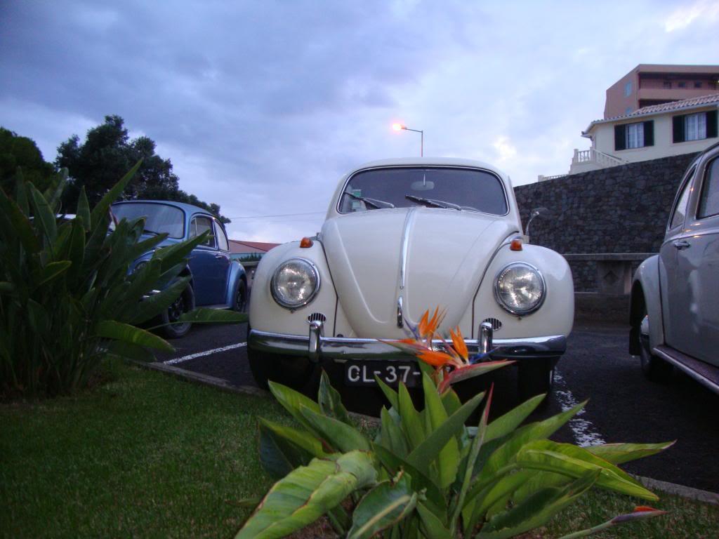 10º Passeio ao Porto Santo Clube Carocha da Madeira DSC05335