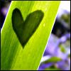 Avatarų konkursas. 2 DALIS [JAU PASKELBTA NUGALĖTOJA] - Page 3 QLove_Nature_by_Phoenix_Lily-1