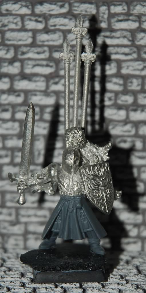 Warband - Bretonnian Questing Knights (Work in process) - Page 5 DSC_2879