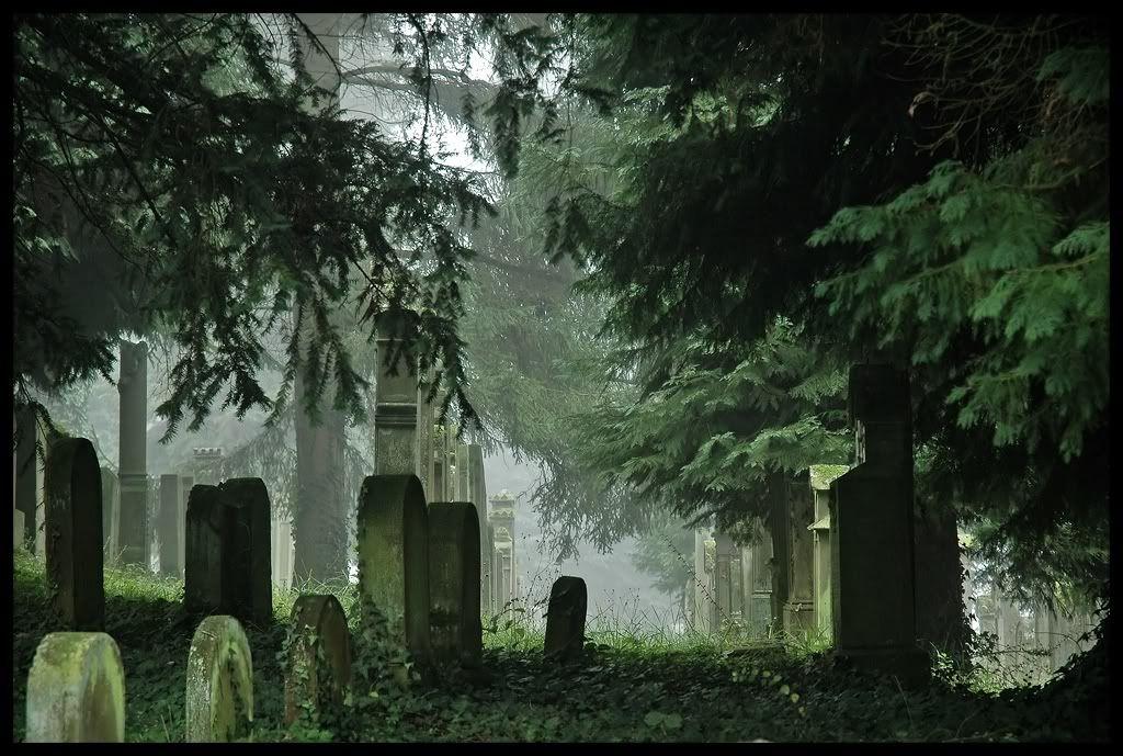 Гробището на края на града Jewish_Graveyard_II_by_FrederikM
