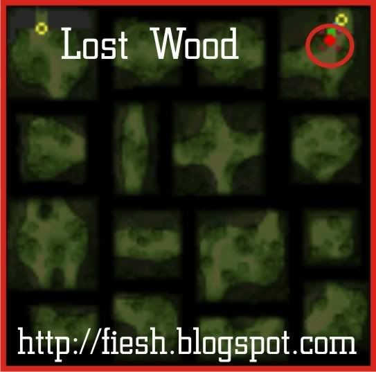 Guía Ragnarok DS Lostwood