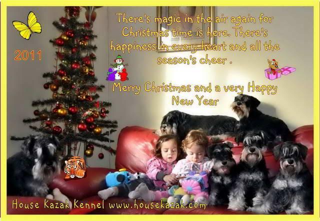 HAPPY NEW YEAR. HolidayHouseKazak2011aforum