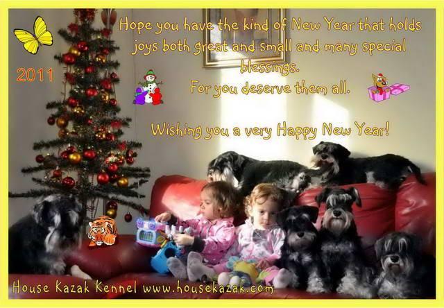 HAPPY NEW YEAR. HolidayHouseKazak2011bbforum