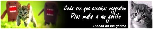 holaa        n____n Gatitossethni3