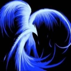 Phoenix Tears Bar